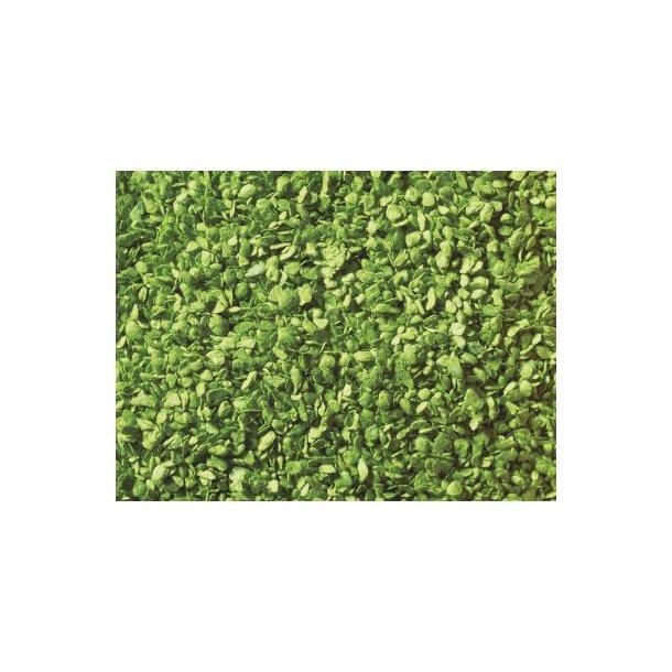 07142 Noch lyse grønne blade. 50 g.