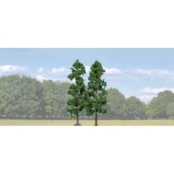 1130 HEKI Bøge træer