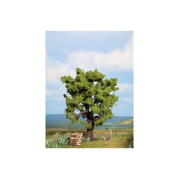 21760 NOCH. 1 stk. Egetræ.