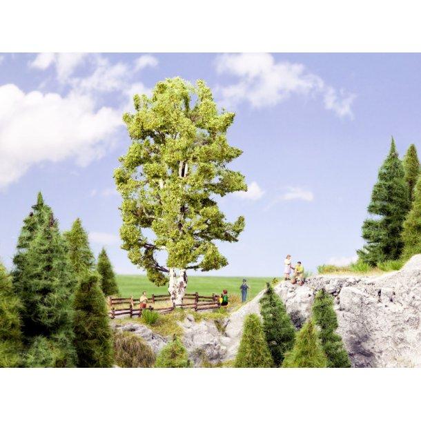 21641 NOCH Birketræ dobbeltstammet. 19 cm højt.