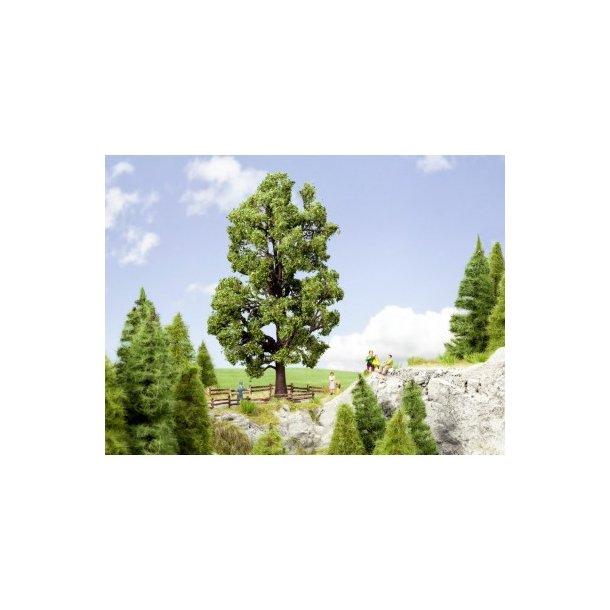 21802 NOCH Kastanietræ.