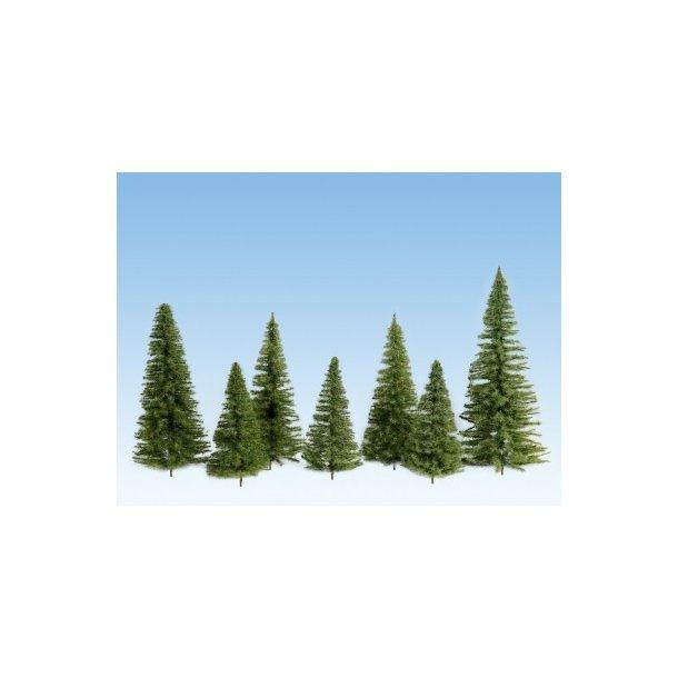 24501 NOCH Grantræer i størrelse fra 7 til 14 cm.